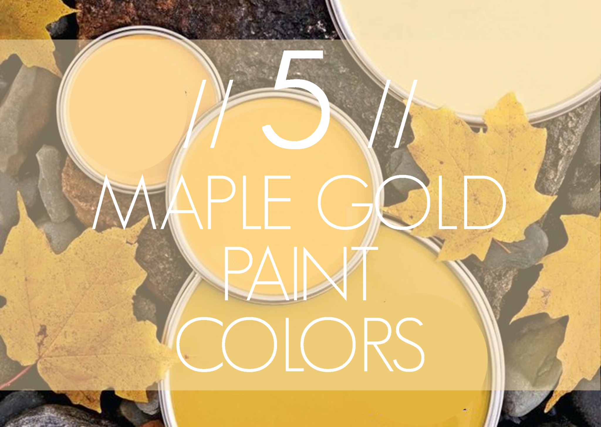 Imagine Design 5 Maple Gold Paint Colors From Better