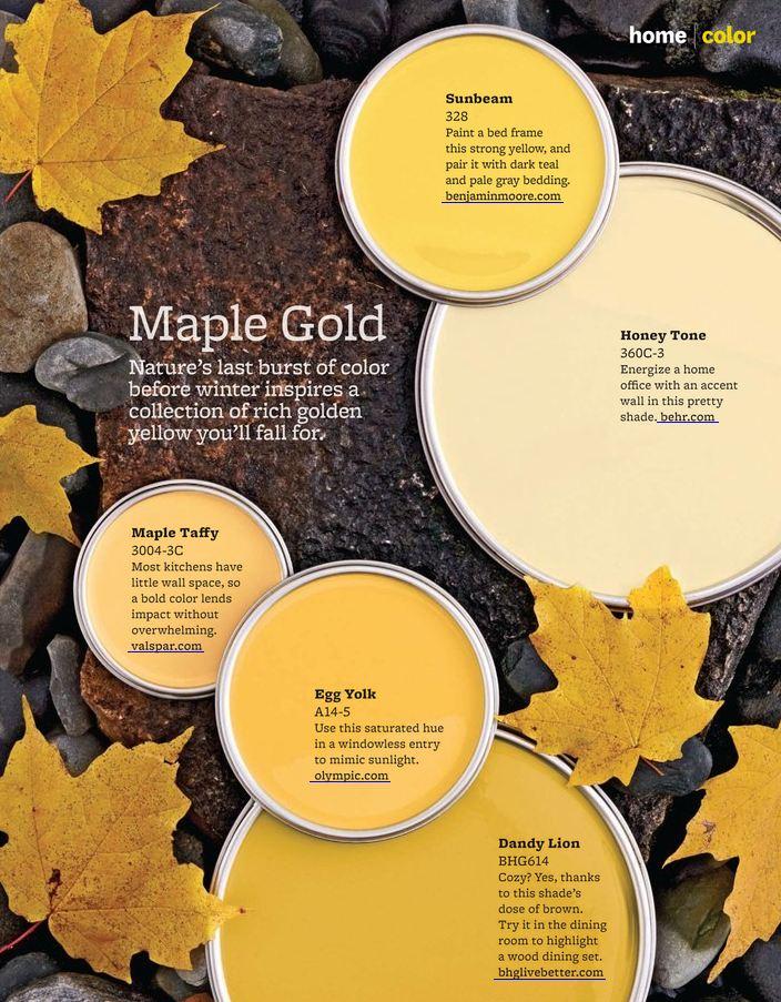 5 Maple Gold Paint Colors